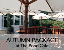 Autumn at The Pond Cafe